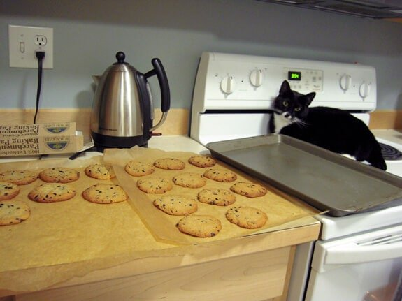Elana's Gluten Free Vegan Chocolate Chip Cookies