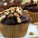 peanut butter chocolate chip gluten free flourless cupcakes