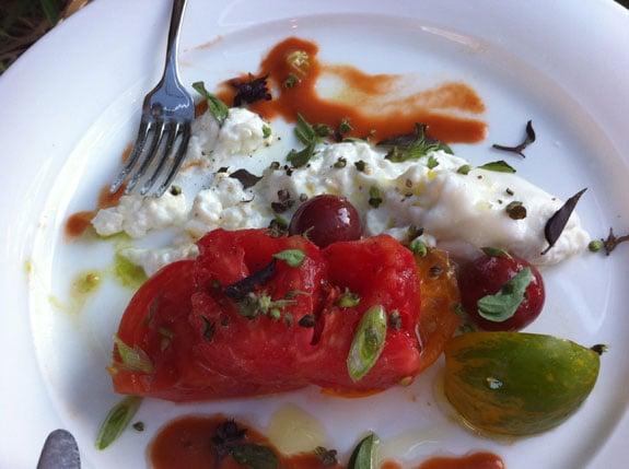 mozzarella tomato appetizer bardessano