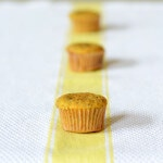 paleo lemon poppyseed muffin recipe