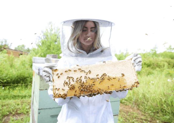 Beekeeper's Naturals Immune Support