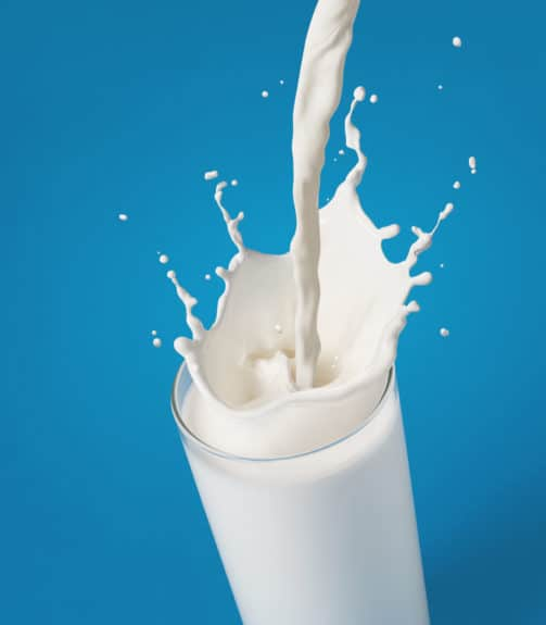 The Best Milk For The Keto Diet