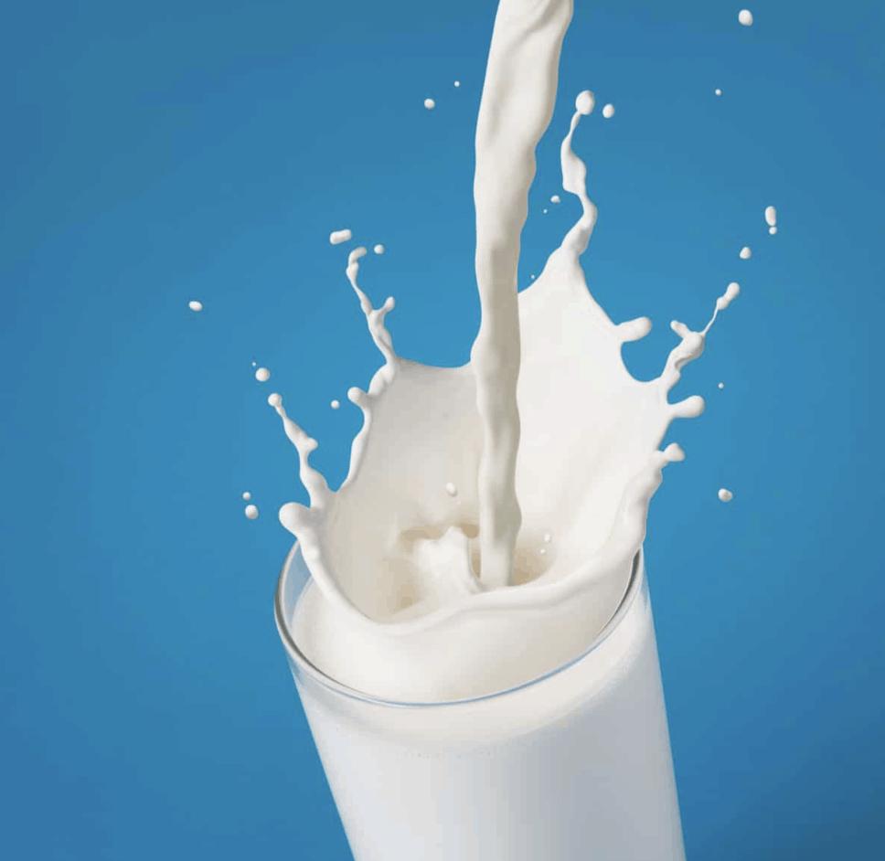 Best Milk for Keto